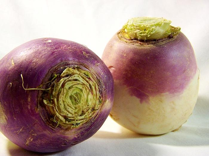 «Brassica rapa»