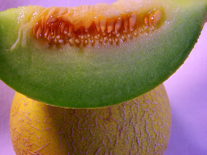 «Cucumis melo cantalupensis»