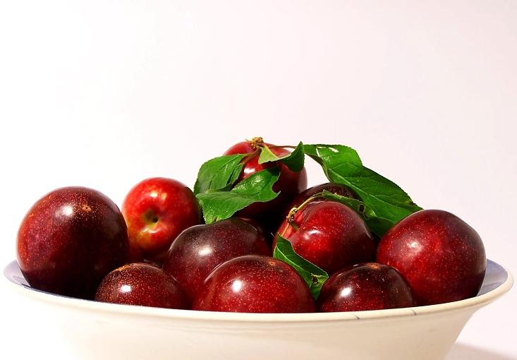 «Prunus»