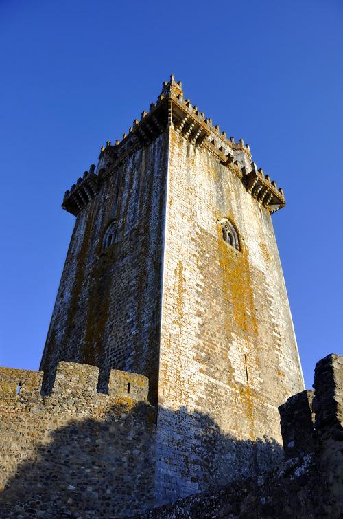 Torre de líquenes
