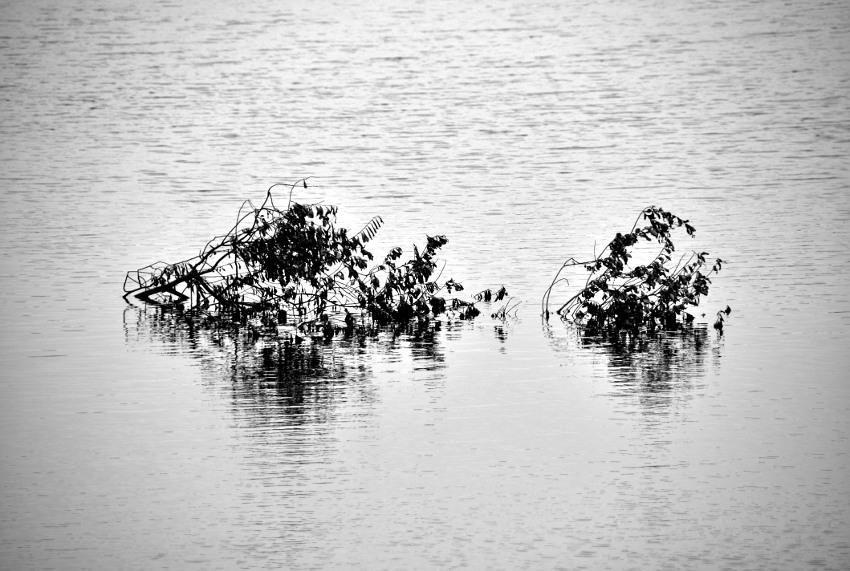 A inundação